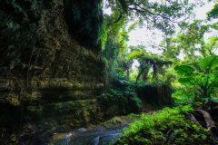 Valley of Gangala